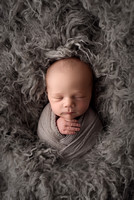 Jacob Roy | Newborn Portraits | Colorado Springs Baby Photography