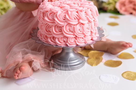 Fantastic Shelly Pray Photography Brinleys First Birthday Fairy Princess Funny Birthday Cards Online Necthendildamsfinfo