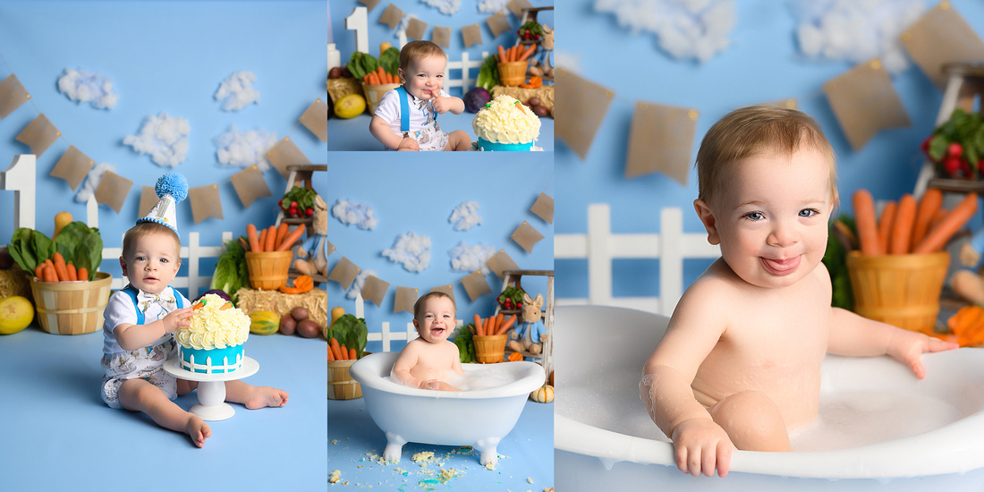 Peter Rabbit Cake Smash, Colorado Springs, CO, Baby boy, Fort Carson Cake Smash Photographer